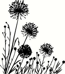 262x300 Summer Meadow With Variable Plants. Vinyl Wall Art, Dandelions