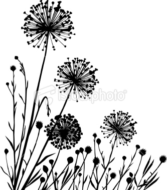 333x380 Summer Meadow With Variable Plants. Dandelions, Canvases