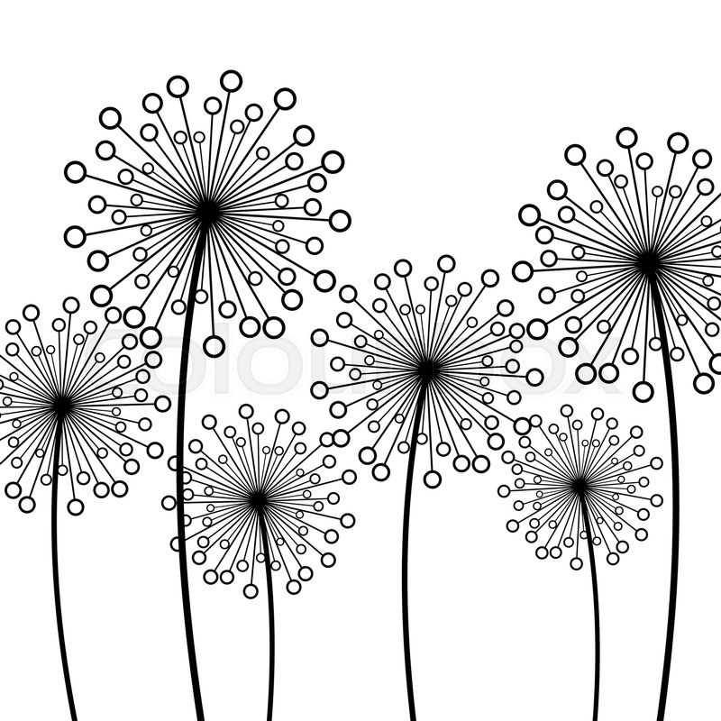 Dandelion Flower Drawing