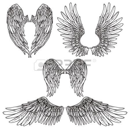 450x450 Sketch Angel Or Bird Wings On Dark Background With Wings