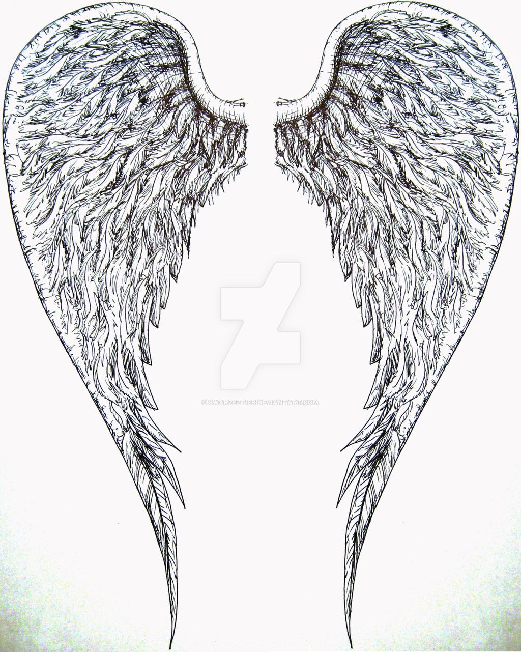 1024x1281 Angel Wings By Swarzeztier