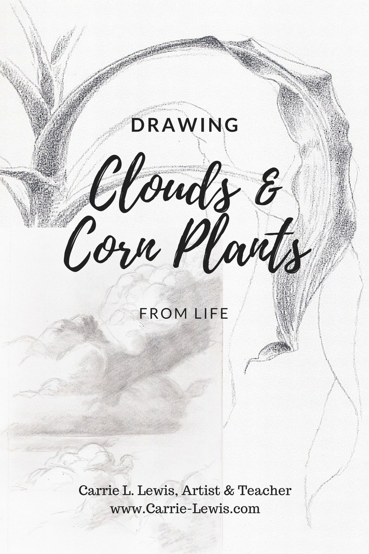 735x1102 Drawing Clouds Amp Corn Plants From Life