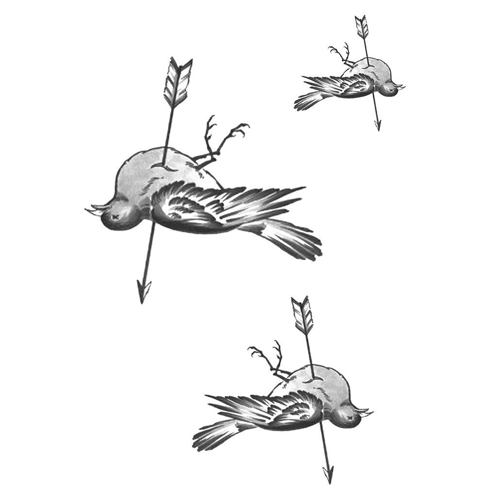 1024x1024 Dead Bird Illustration