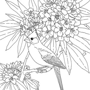 Dead Bird Drawing at GetDrawings.com | Free for personal use ...