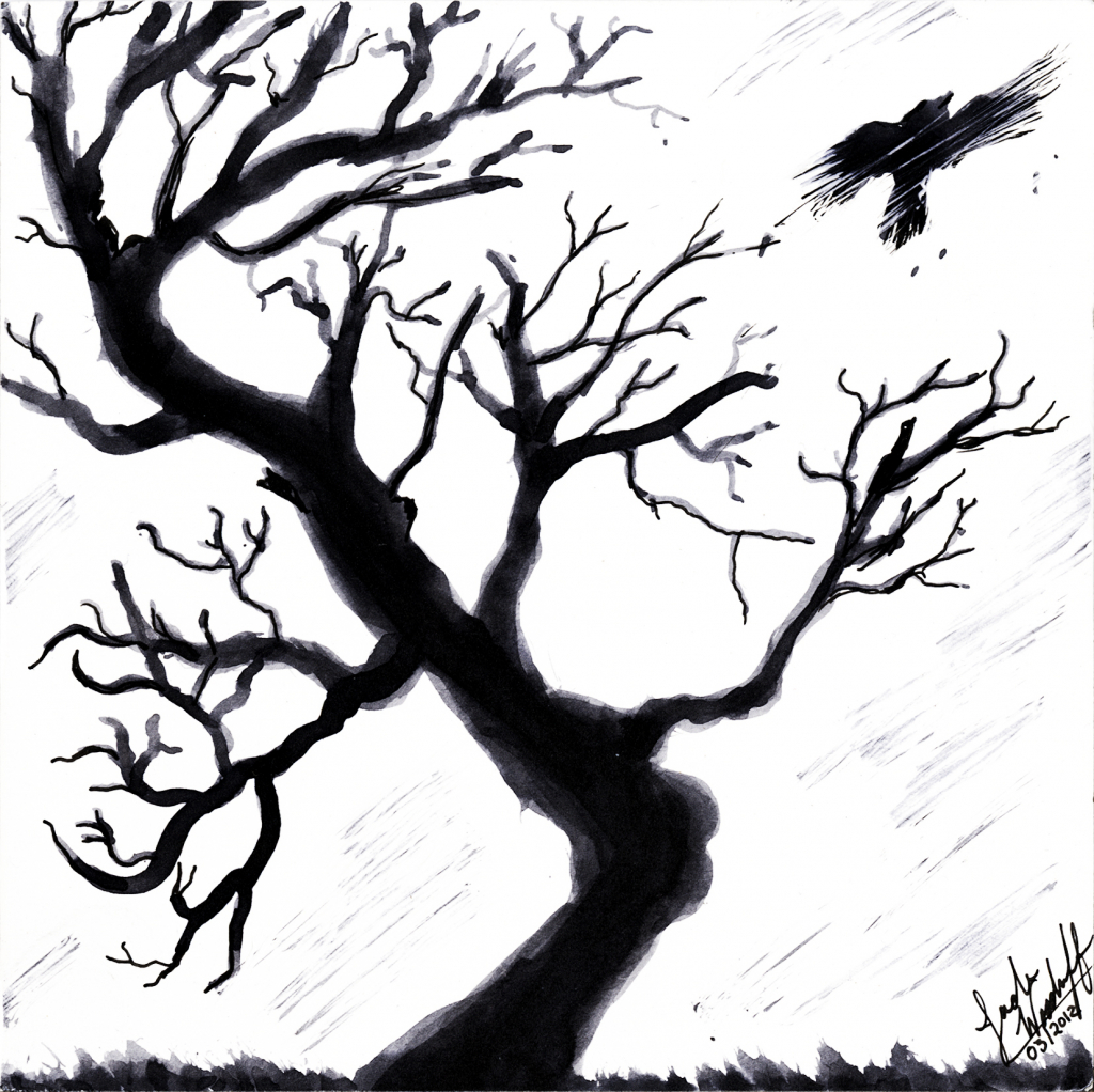 1024x1022 Dead Tree Drawing Dead Tree Drawings Related Keywords Amp