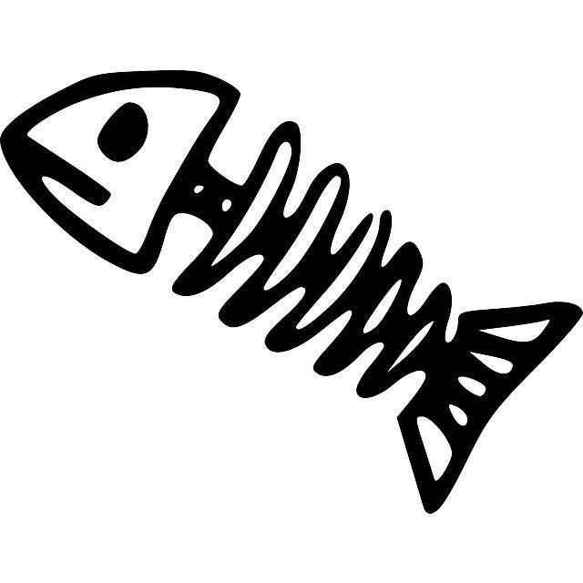 640x640 Bonefish On Scratch