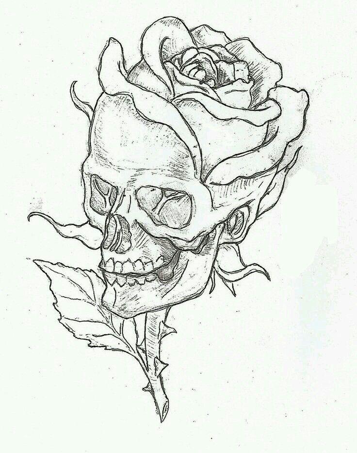 736x935 Skull N Rose Day Of The Dead, Sugar Skulls And Skulls
