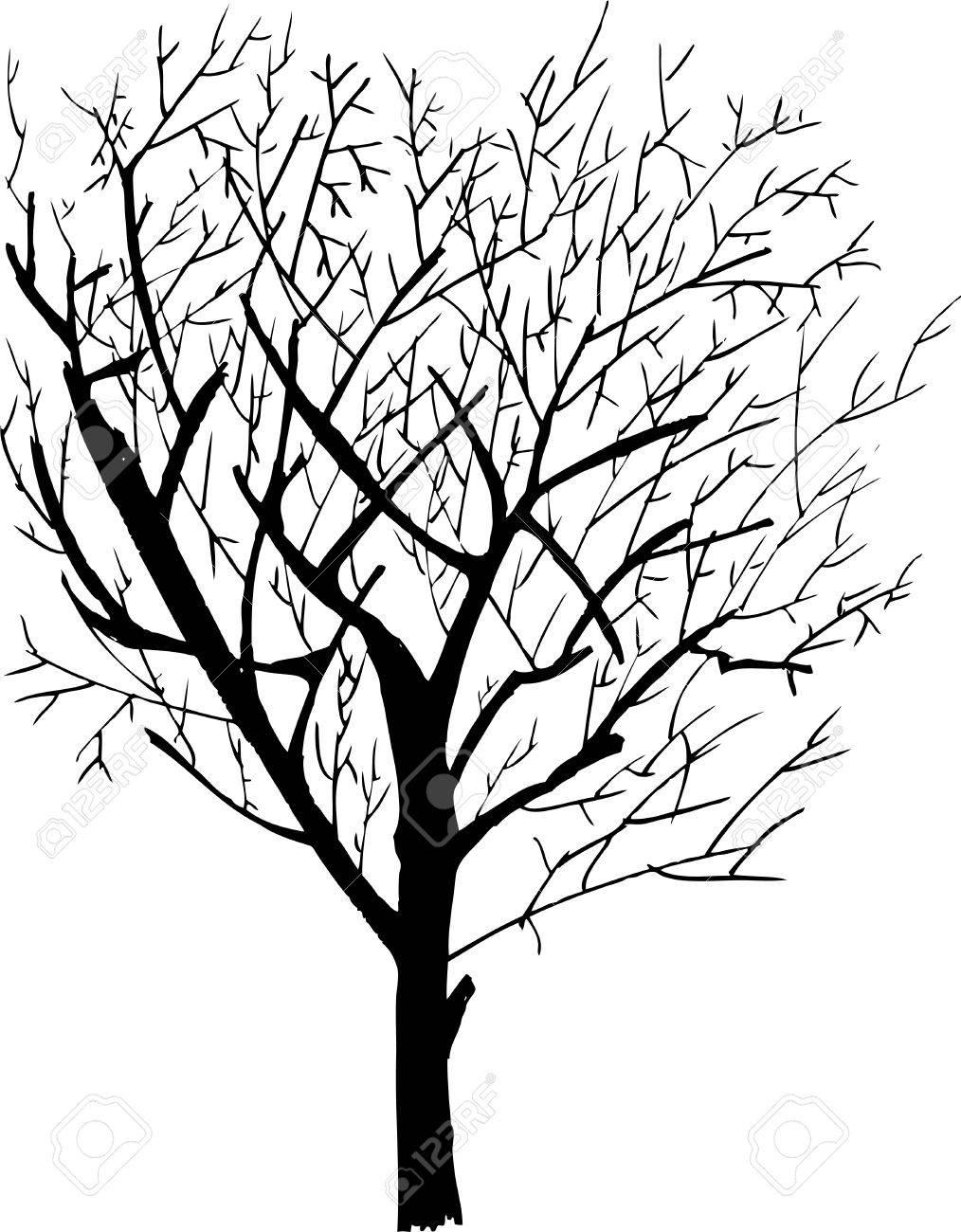 1014x1300 Hand Draw Sketch, Dead Tree Royalty Free Cliparts, Vectors,
