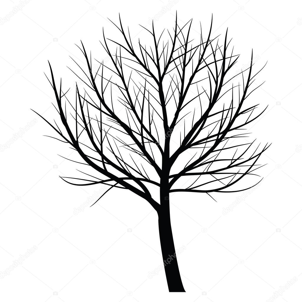 1024x1024 Trees With Dead Branch Stock Vector Kateen2528