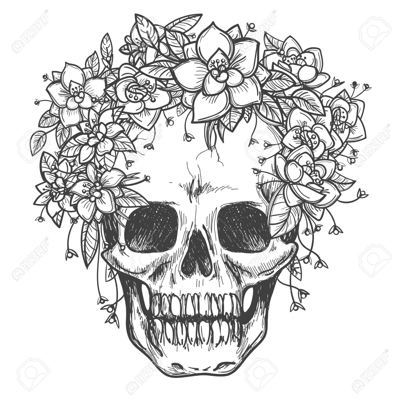 1299x1300 Vector Drawing Dead Skull With Rose Flowers Sketch Isolated