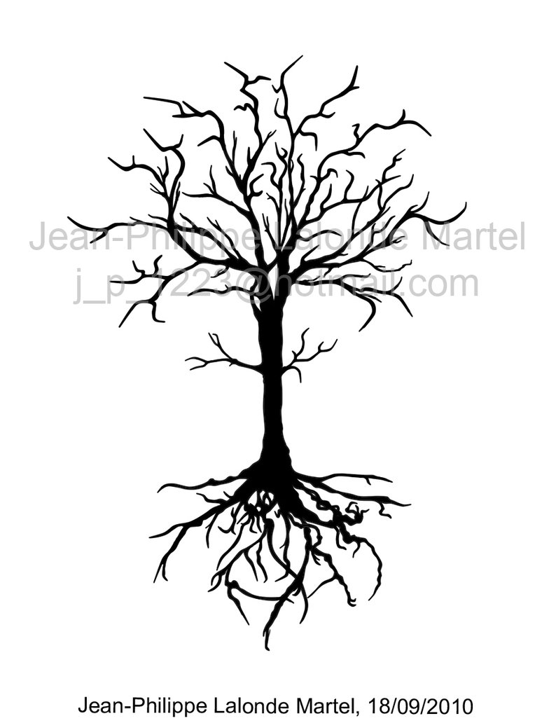 774x1032 Dead Tree By Jp1223