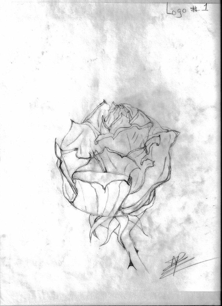 762x1048 Rose Logo Sketch By Ilovevampires18