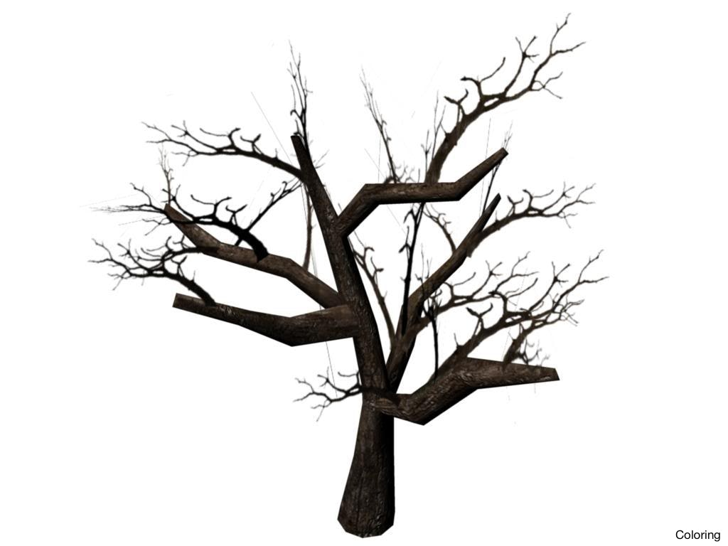 1024x768 Dead Tree Drawing Trees Drawings Clipart Best How To Draw