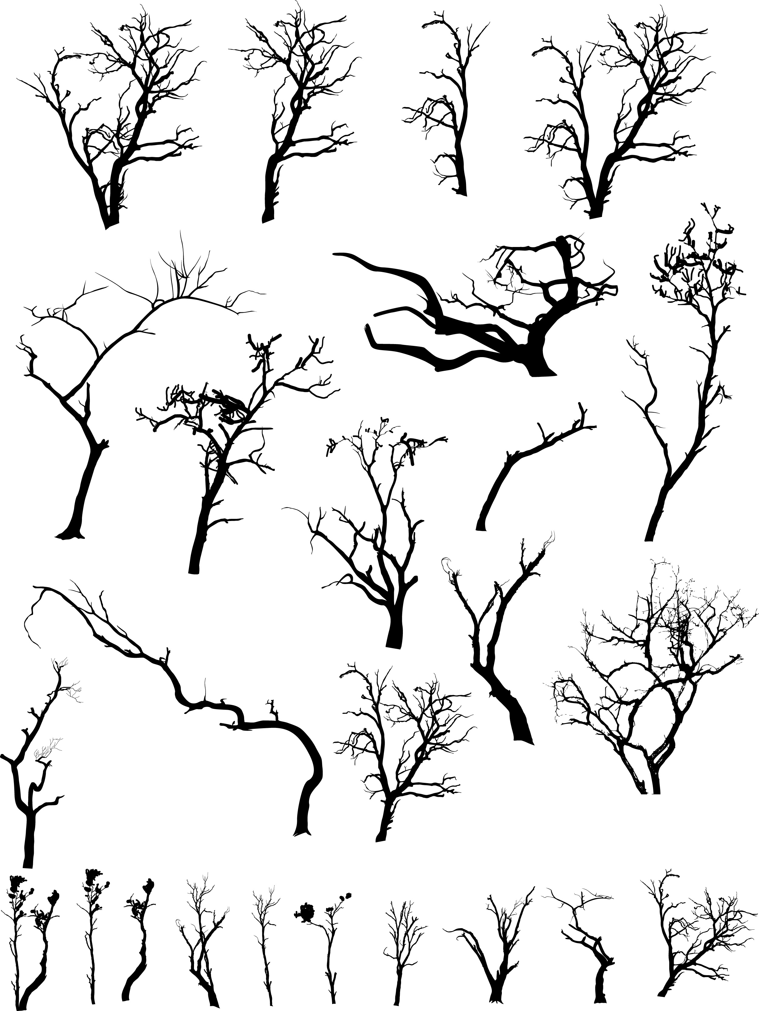 2500x3332 Dead Tree Silhoutte Clip Art Hd Walls Find Wallpapers