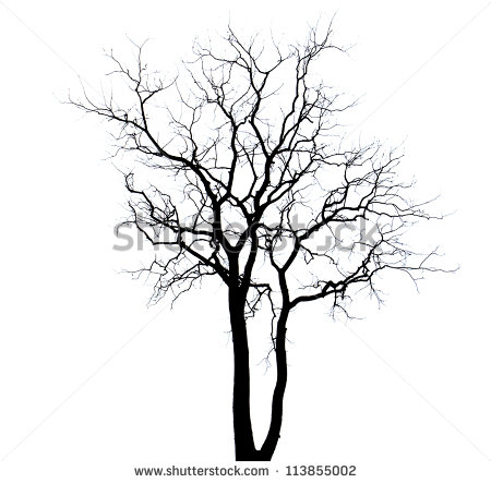 450x443 Drawn Dead Tree Dry Tree
