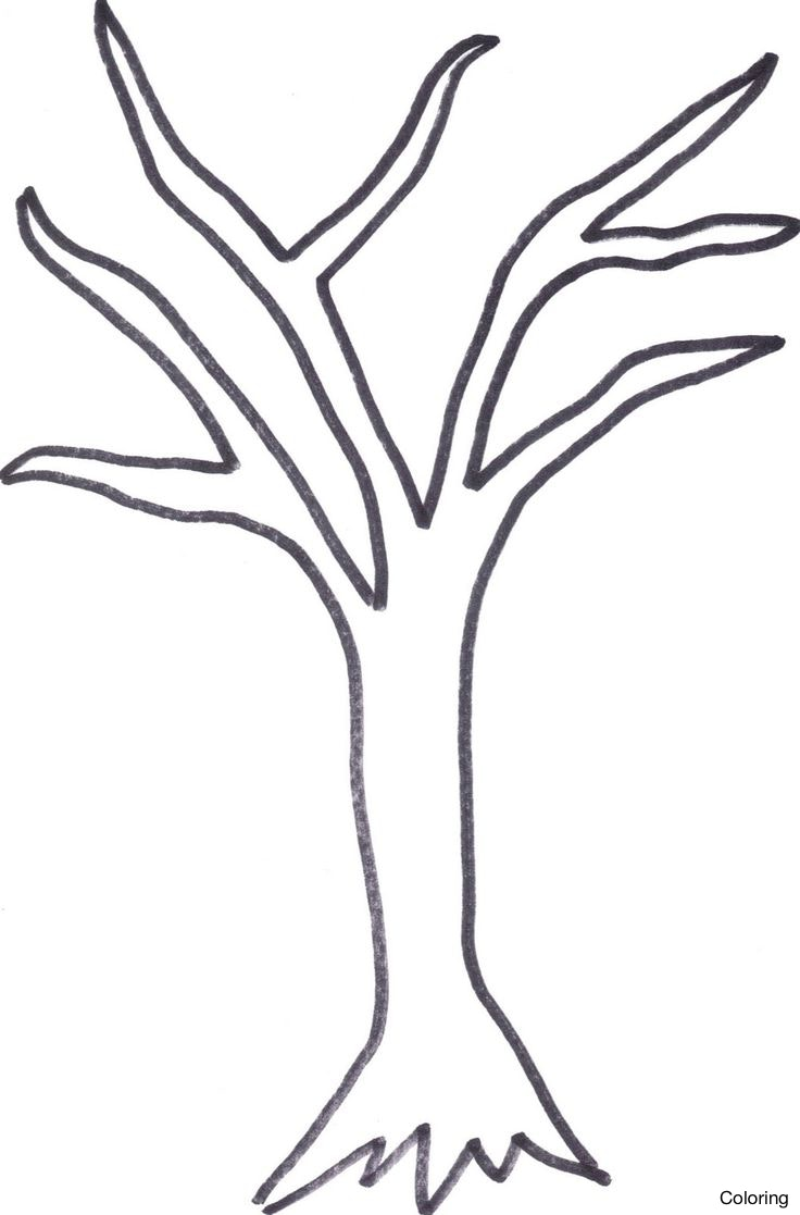 736x1117 How To Draw A Dead Tree Coloring Drawing Black And White 3f Branch