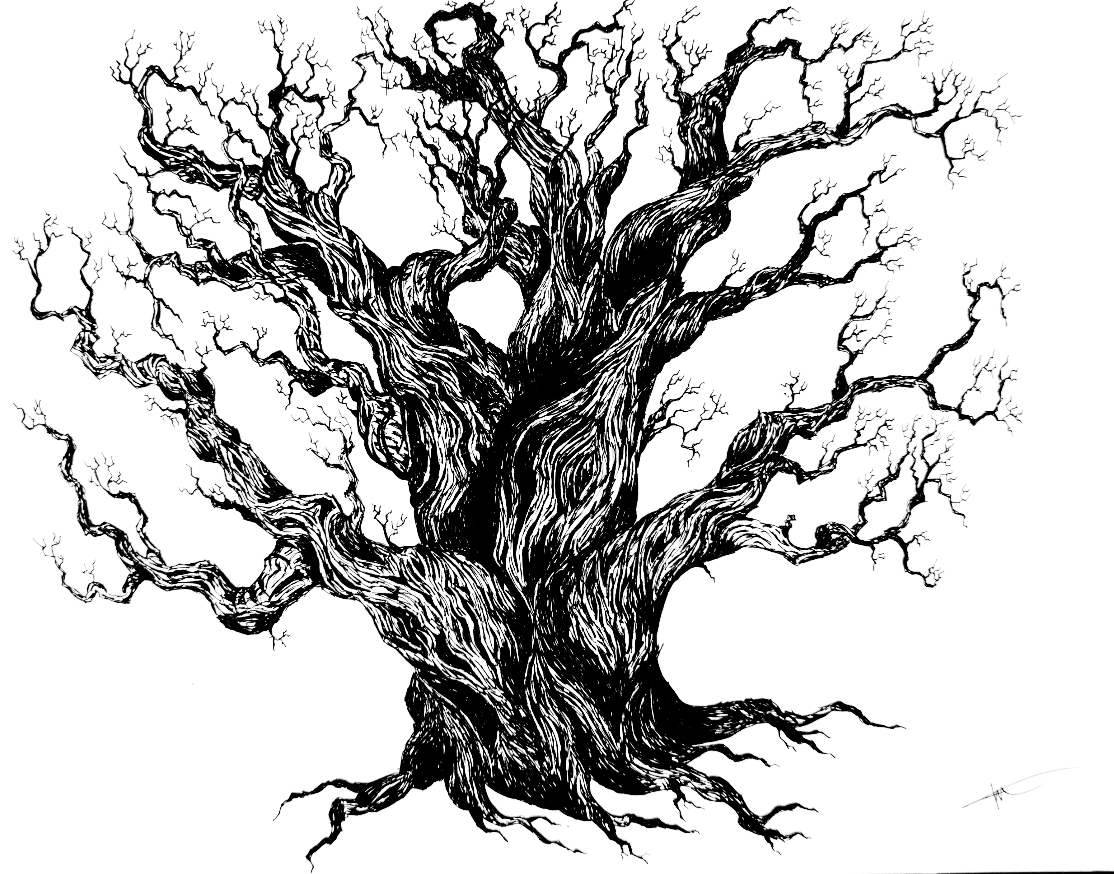 3580x2811 Tree' Drawing Timelapse 19hertz