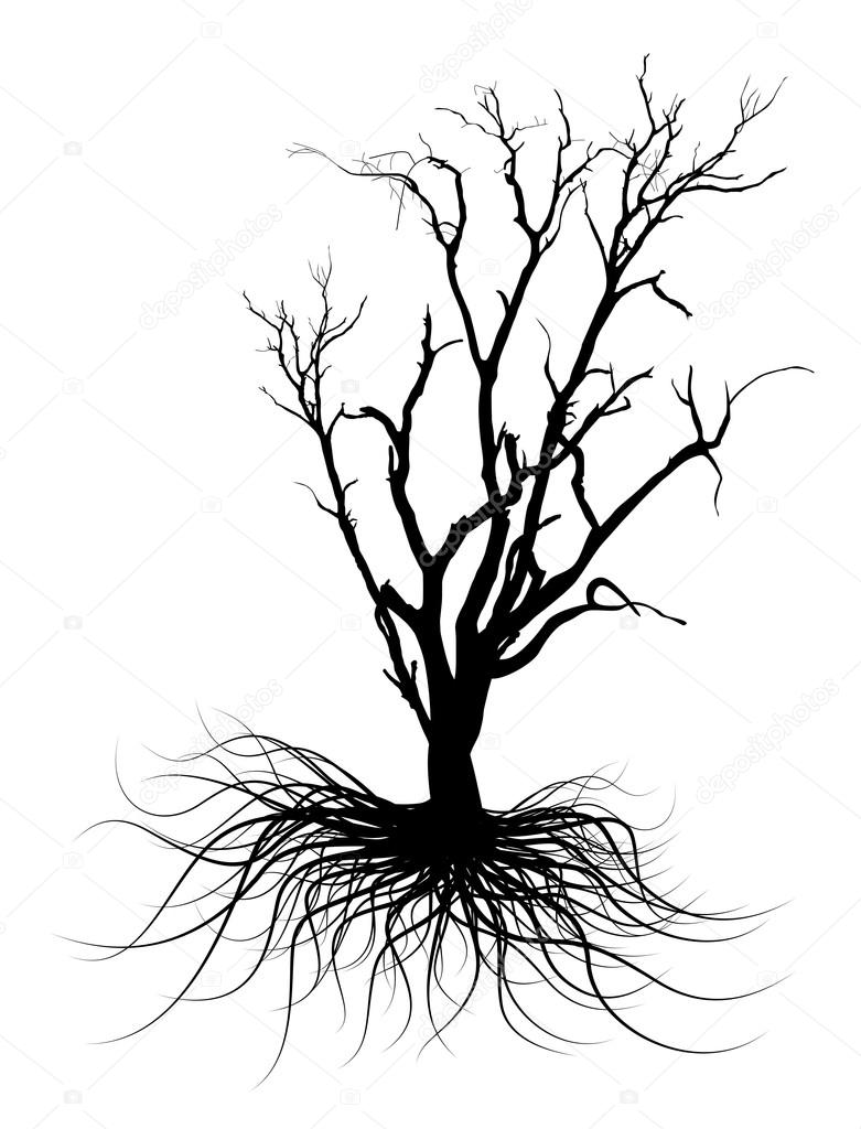 781x1024 Black Dead Tree Silhouette Stock Vector Baavli