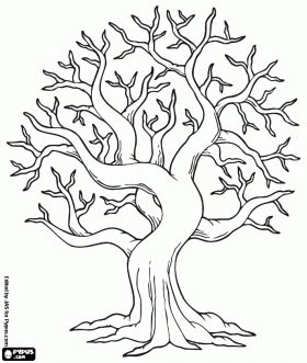 280x331 How To Draw A Tree How To Draw