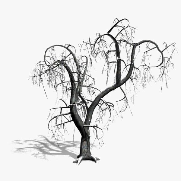600x600 Scanline Winter Deciduous Tree
