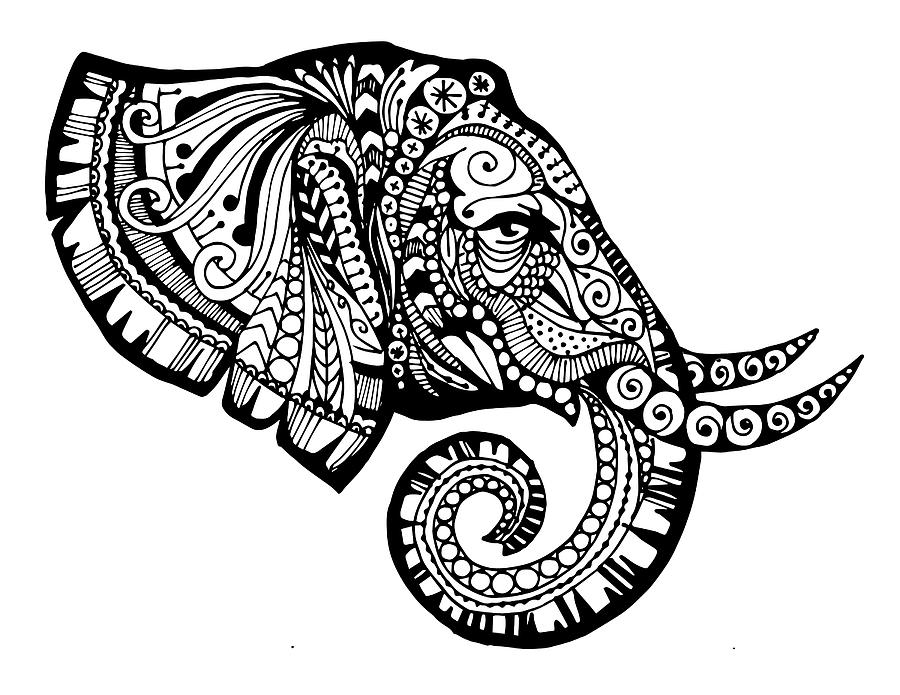 900x695 Elegant Elephant Drawing By Sadie Maughan