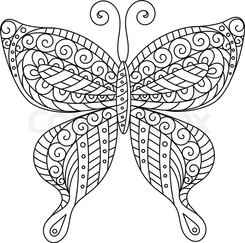 800x796 Coloring Book For Adult And Older Children. Coloring Page. Outline