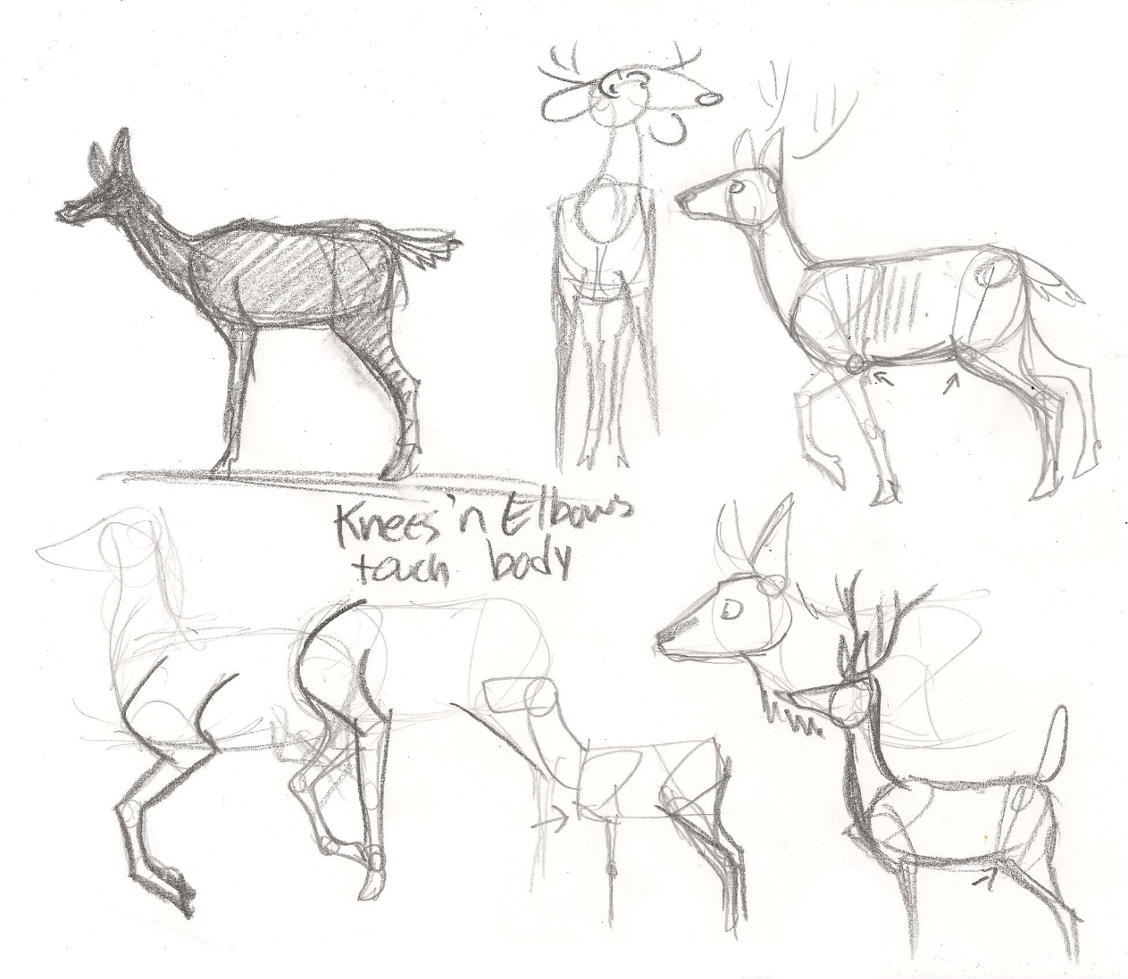 1263x1097 Terrible Deer Legs Tutorial By Wolfy T