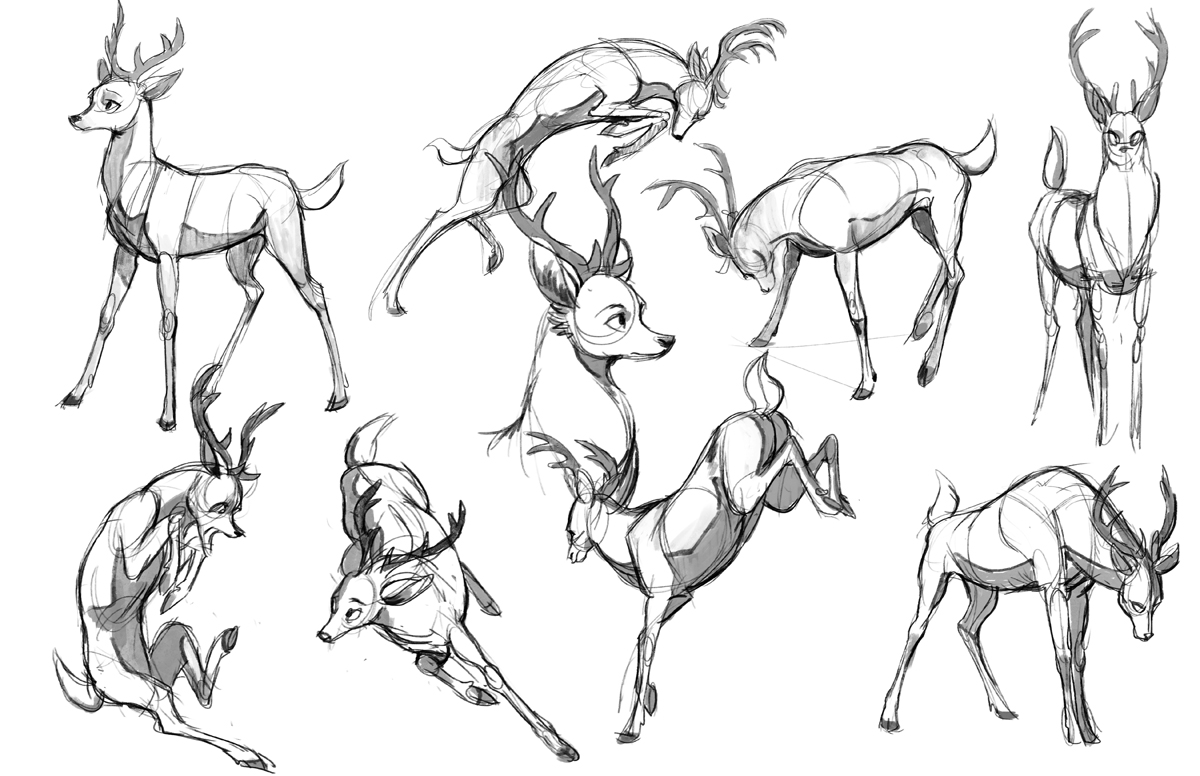 1200x776 Some Stylized Deer Poses Exploration Drawing Animals