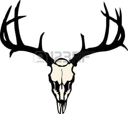 450x399 Deer Antlers Stock Photos. Royalty Free Business Images