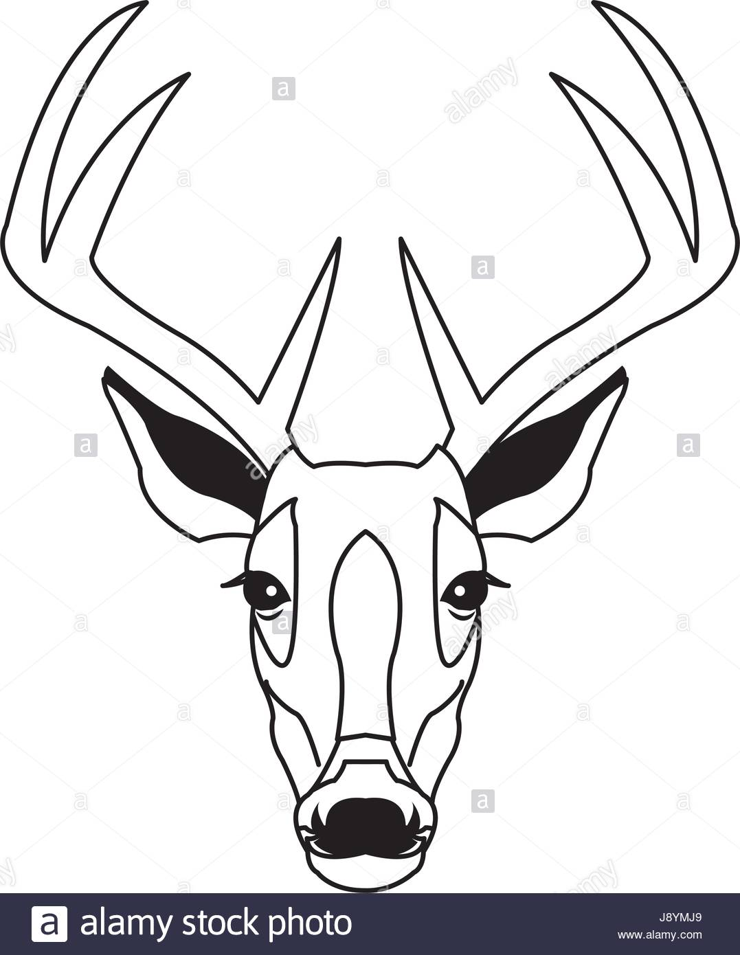 1077x1390 Hand Drawn Graphic Sketch Illustration Of A Deer Head With Big
