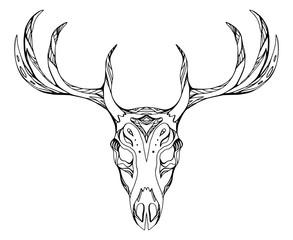 293x240 Search Photos Deer Skull