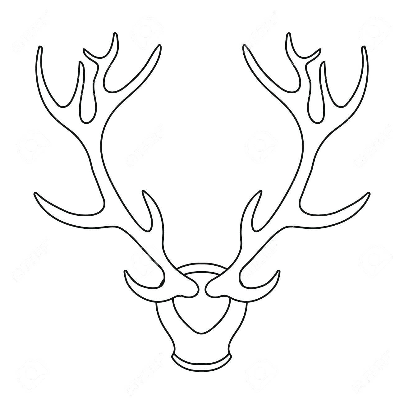 1300x1300 Coloring Terrific Deer Outline. Deer Face Drawing Outline. Deer