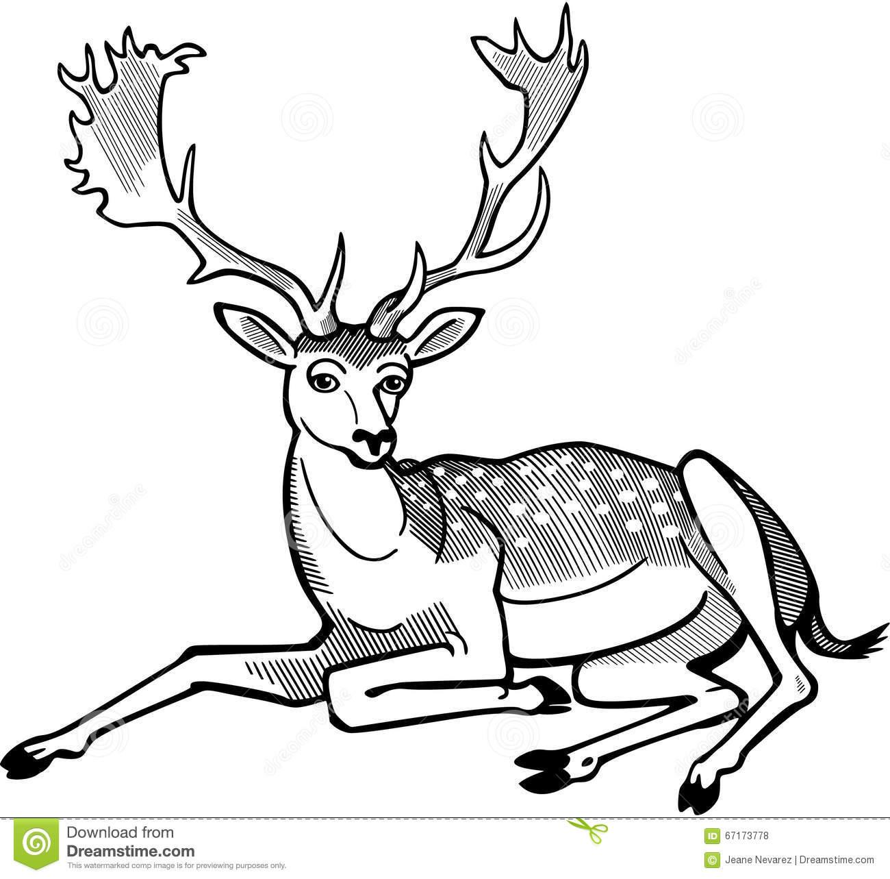 1300x1283 Drawn Deer Male Deer