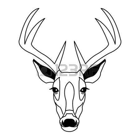 450x450 Hand Drawn Graphic Sketch Illustration Of A Deer Head With Big