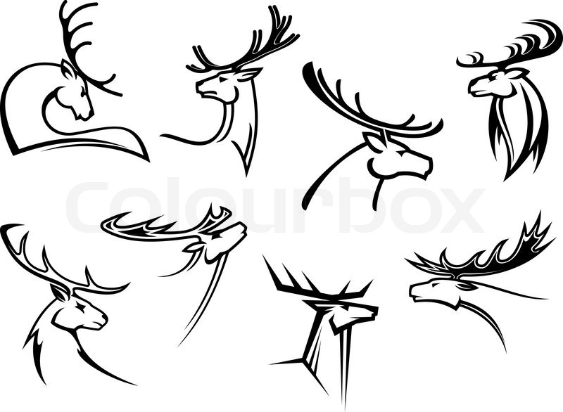 800x586 Outline Sketch Deer Heads With Proud Profile And Large Antlers