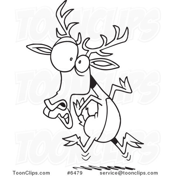 581x600 Cartoon Black And White Line Drawing Of A Scared Deer
