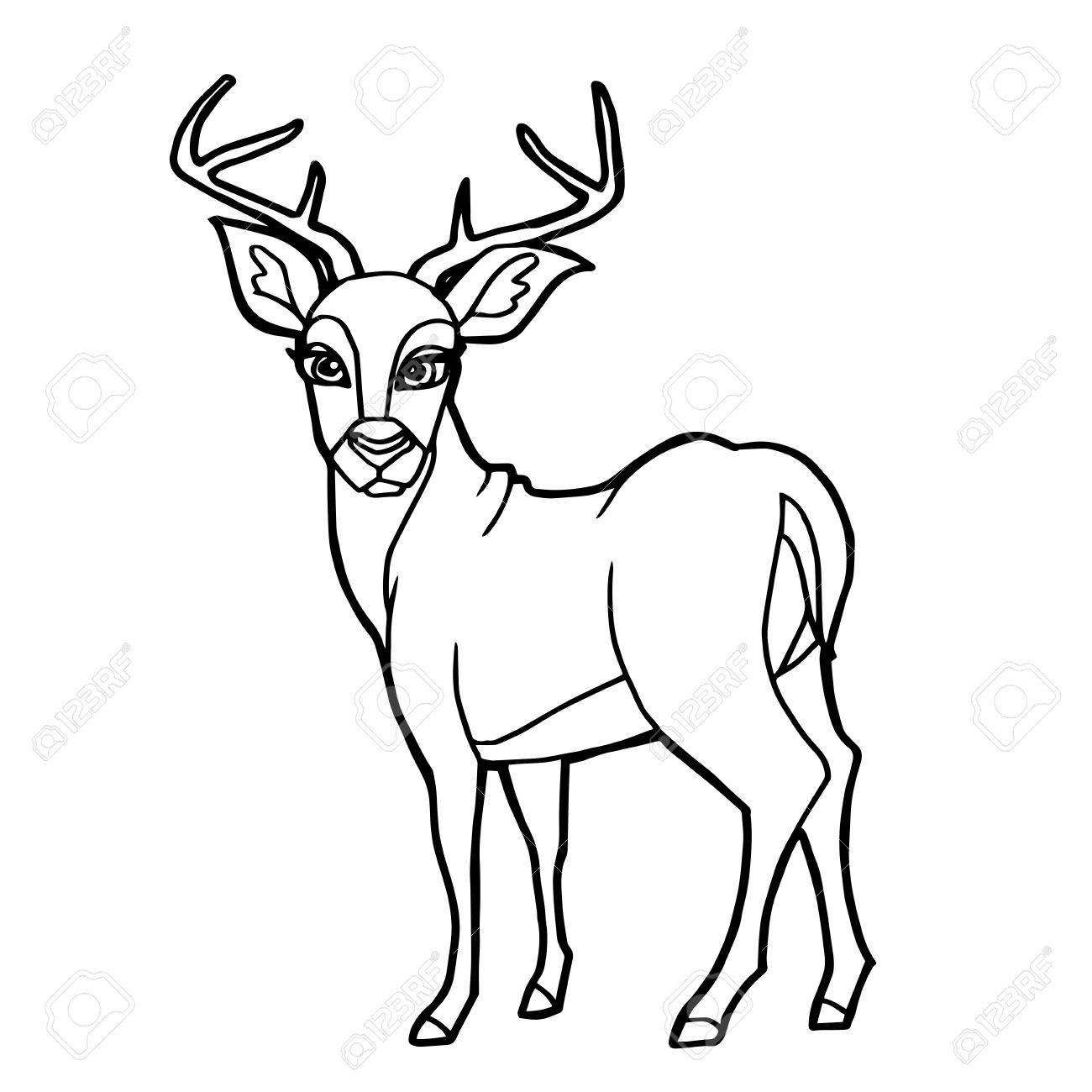 1300x1300 Cartoon Cute Deer Coloring Page Vector Illustration Royalty Free