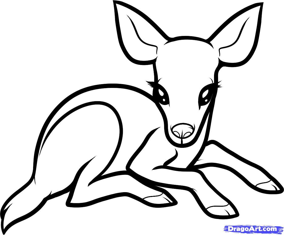 1116x922 Cartoon Drawing Of A Deer How To Draw A Baby Deer, Baby Deer, Step