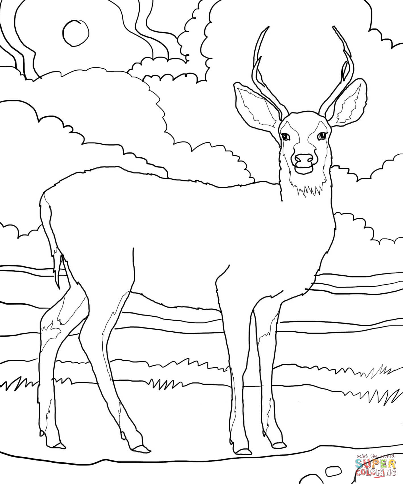 Deer Drawing For Kids At Getdrawings Com Free For Personal Use