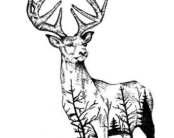 340x270 Deer Drawing Etsy