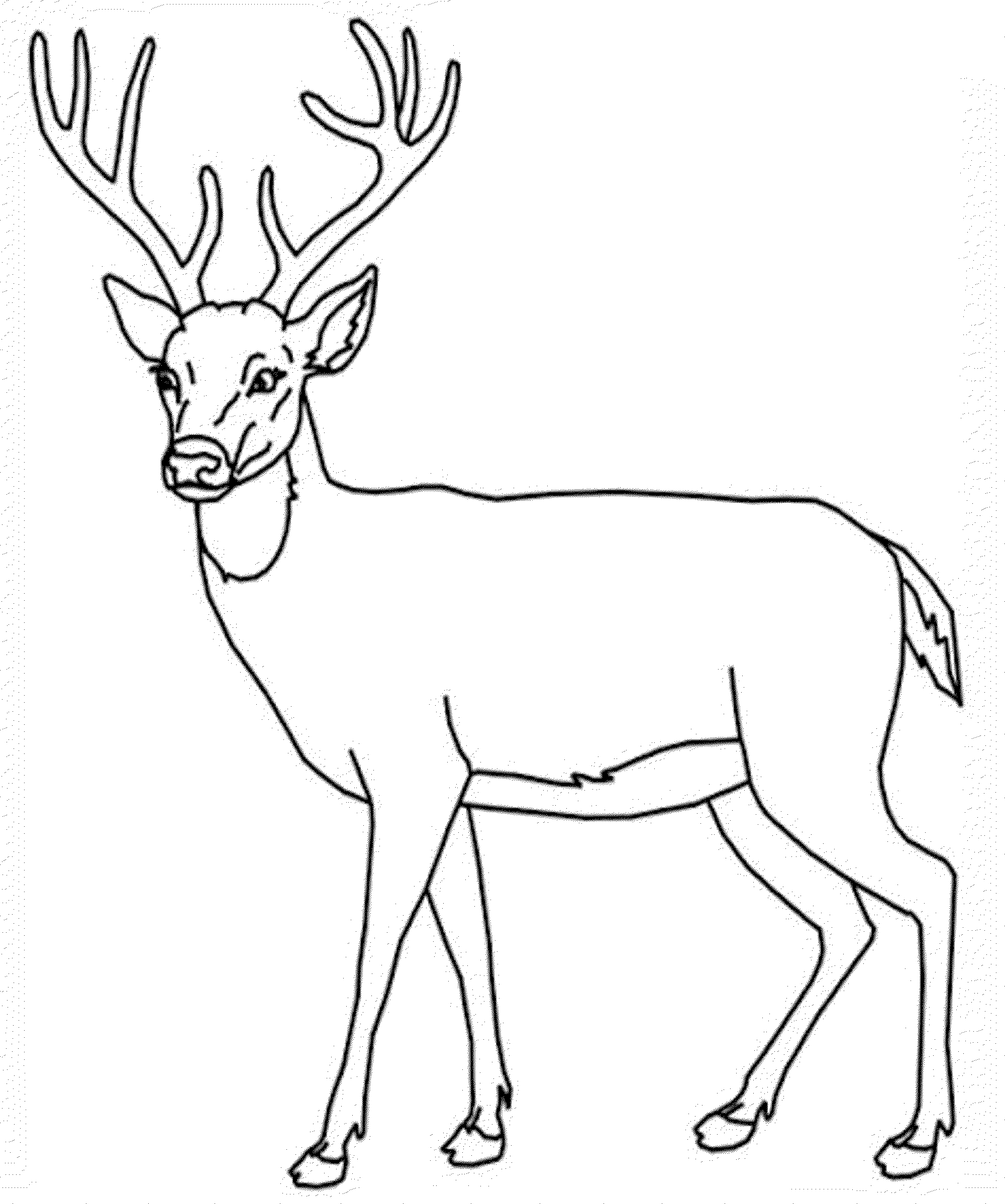 2000x2397 Big Deer Coloring Pages Mosaic Boards Big Deer