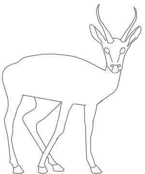 300x360 How To Draw A Gazelle