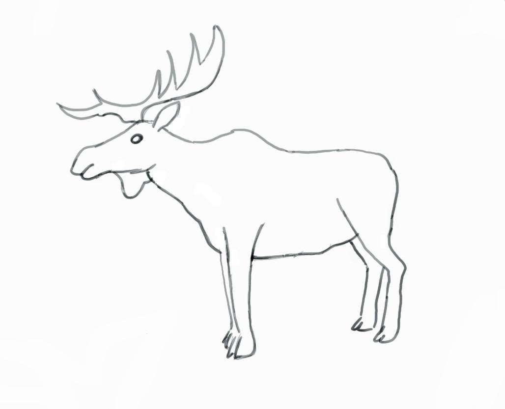 1028x833 Drawn Elk Easy