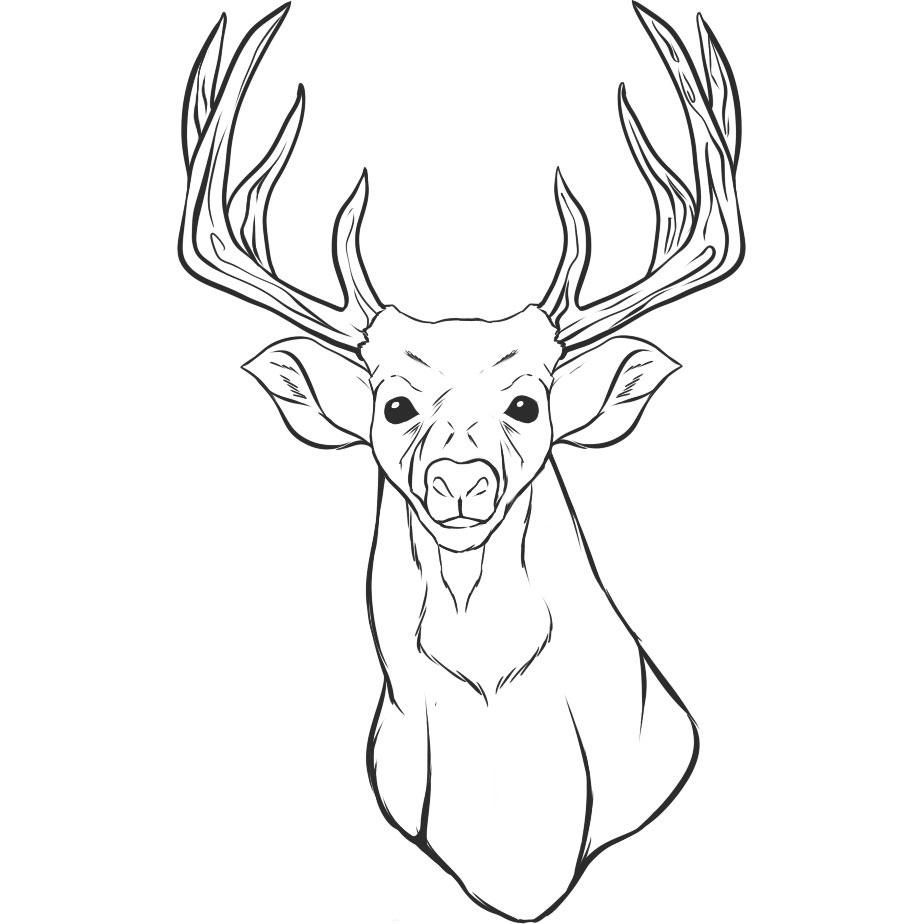 924x924 Large Deer Head Coloring Sheet Deer Head Drawings