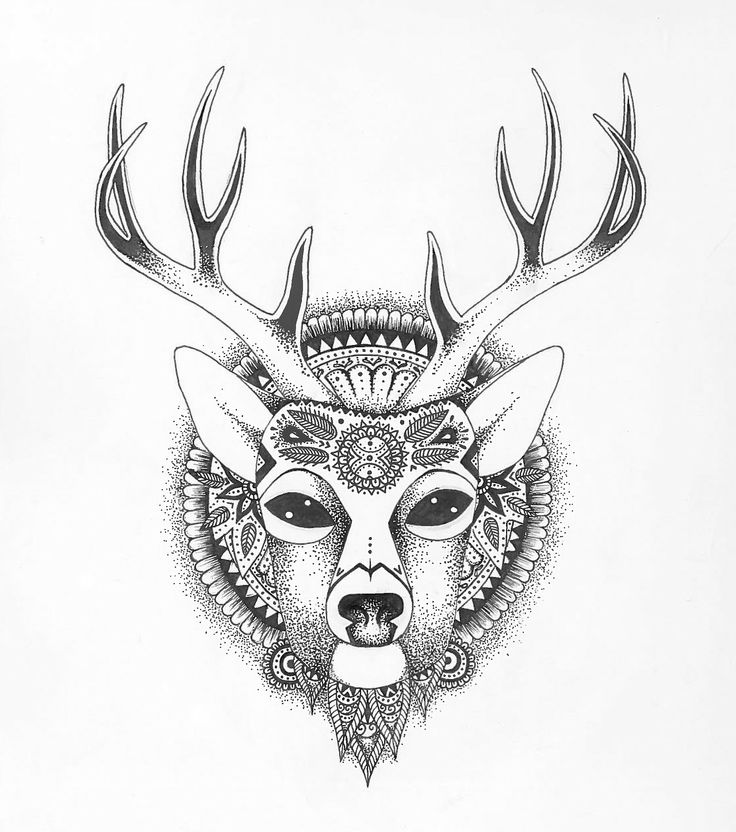 Deer Head Drawing Tumblr