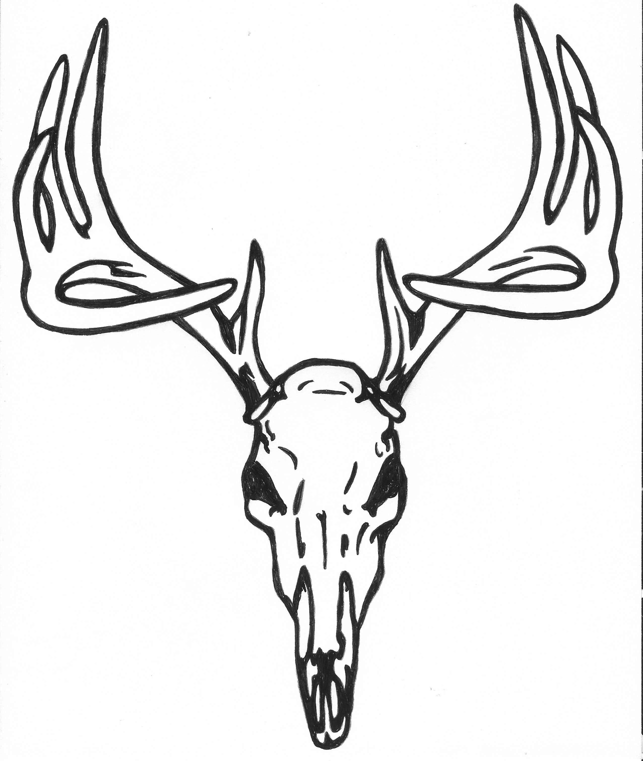 Deer Head Drawing Tumblr at GetDrawings.com | Free for personal use ...