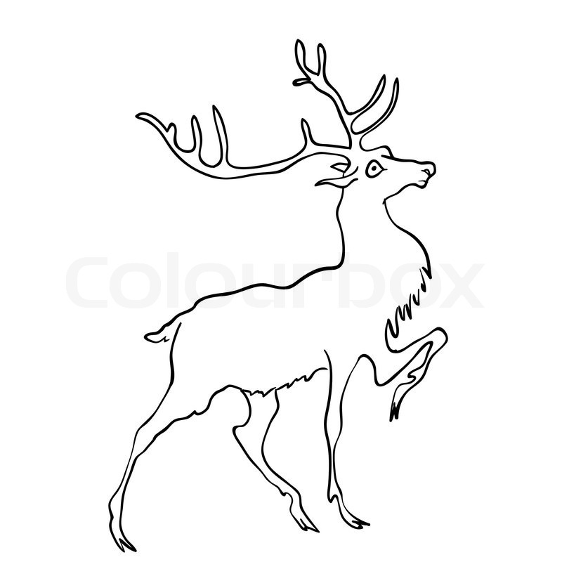 800x800 Vector Drawing Of Deer Stock Vector Colourbox