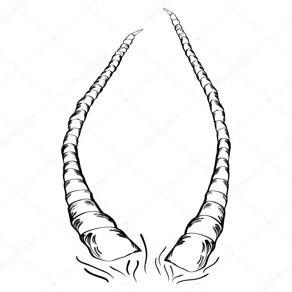 1024x1024 Horns Stock Vector Negativ