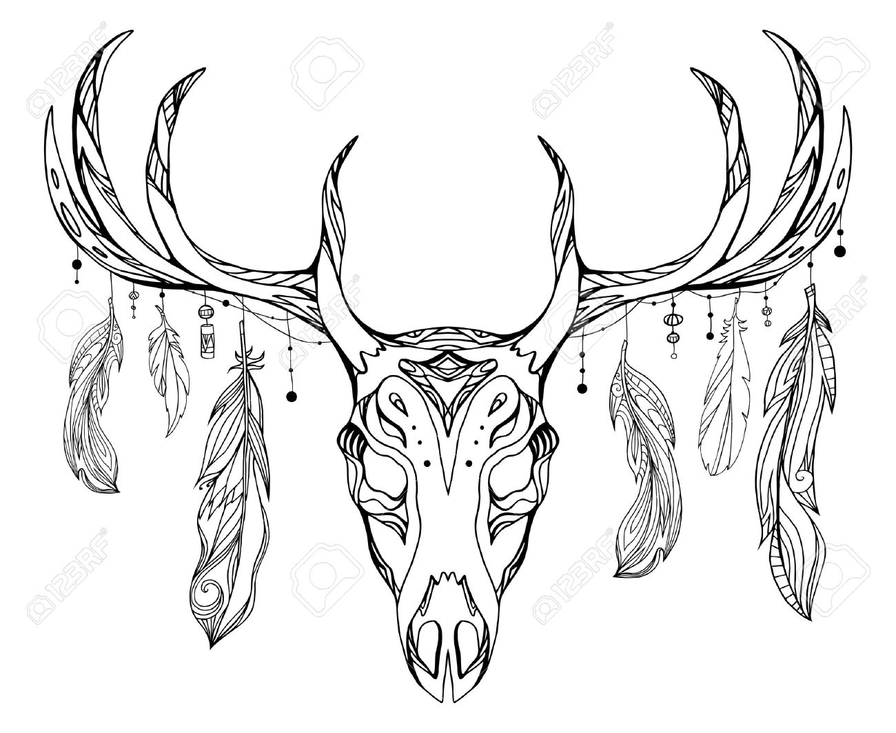 1300x1063 Contour Illustration Of A Deer Skull With Antlers And Feathers