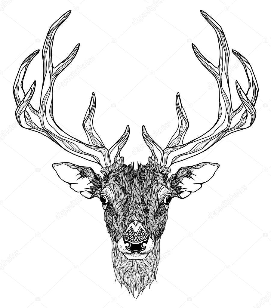 901x1024 Deer Head With Horns Stock Vector Diana Pryadieva